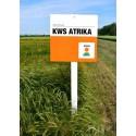 KWS Atrika