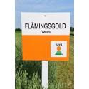 Flamingsgold