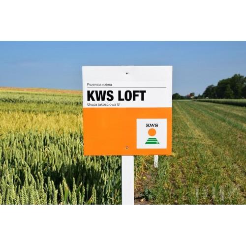 KWS Loft