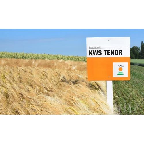 KWS Tenor