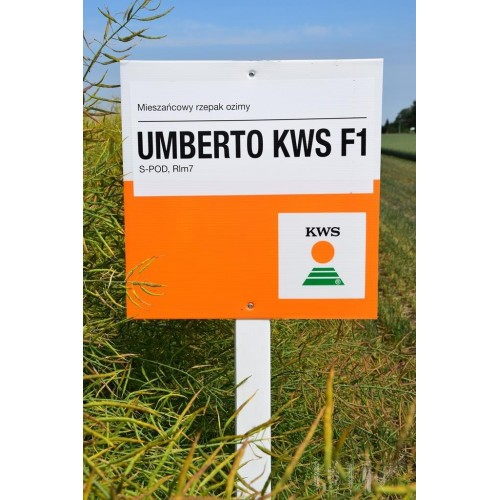 Umberto KWS