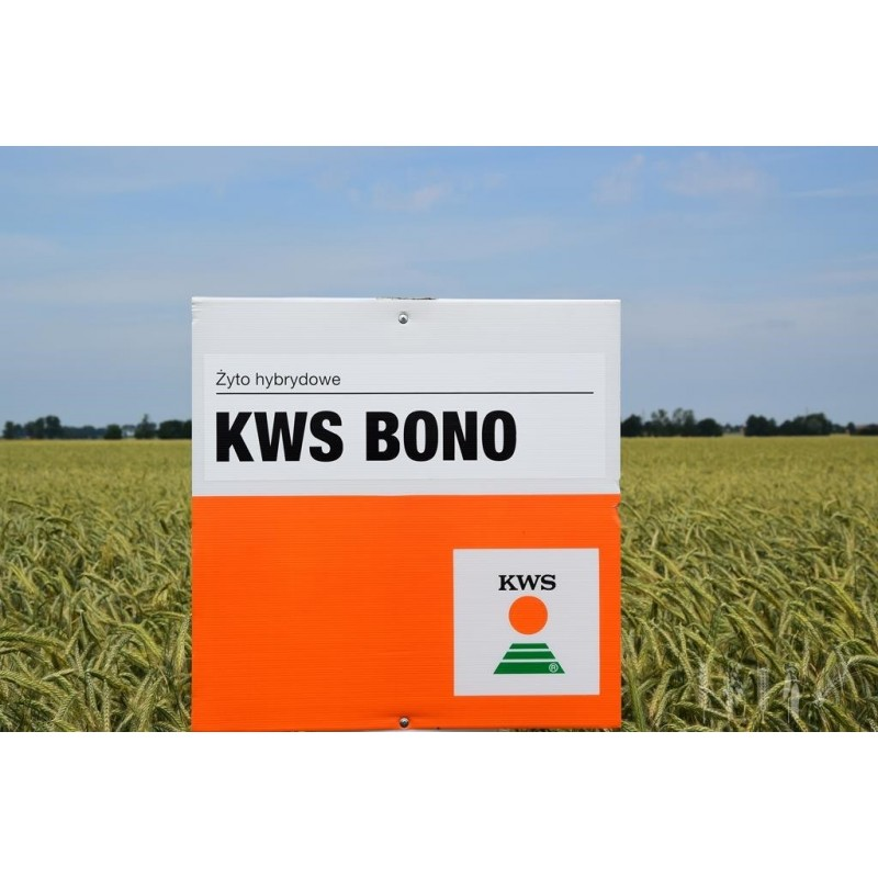 KWS Bono