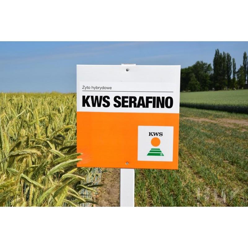 KWS Serafino