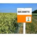 KWS Binntto