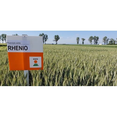 Rhenio